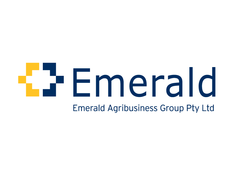 EmShareholders_EstablishEAG_MAR10