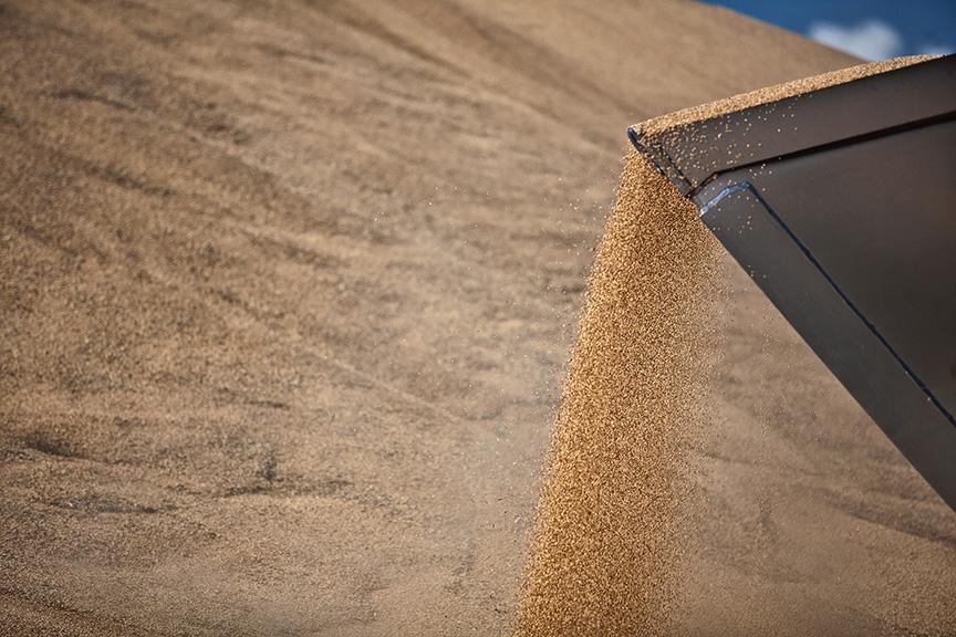 Grain Media Release