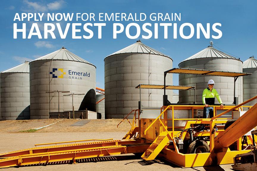 Harvest Casual Job Ad - Tile Image - V4